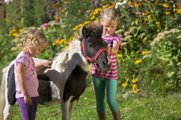Mädchen streicheln Pony