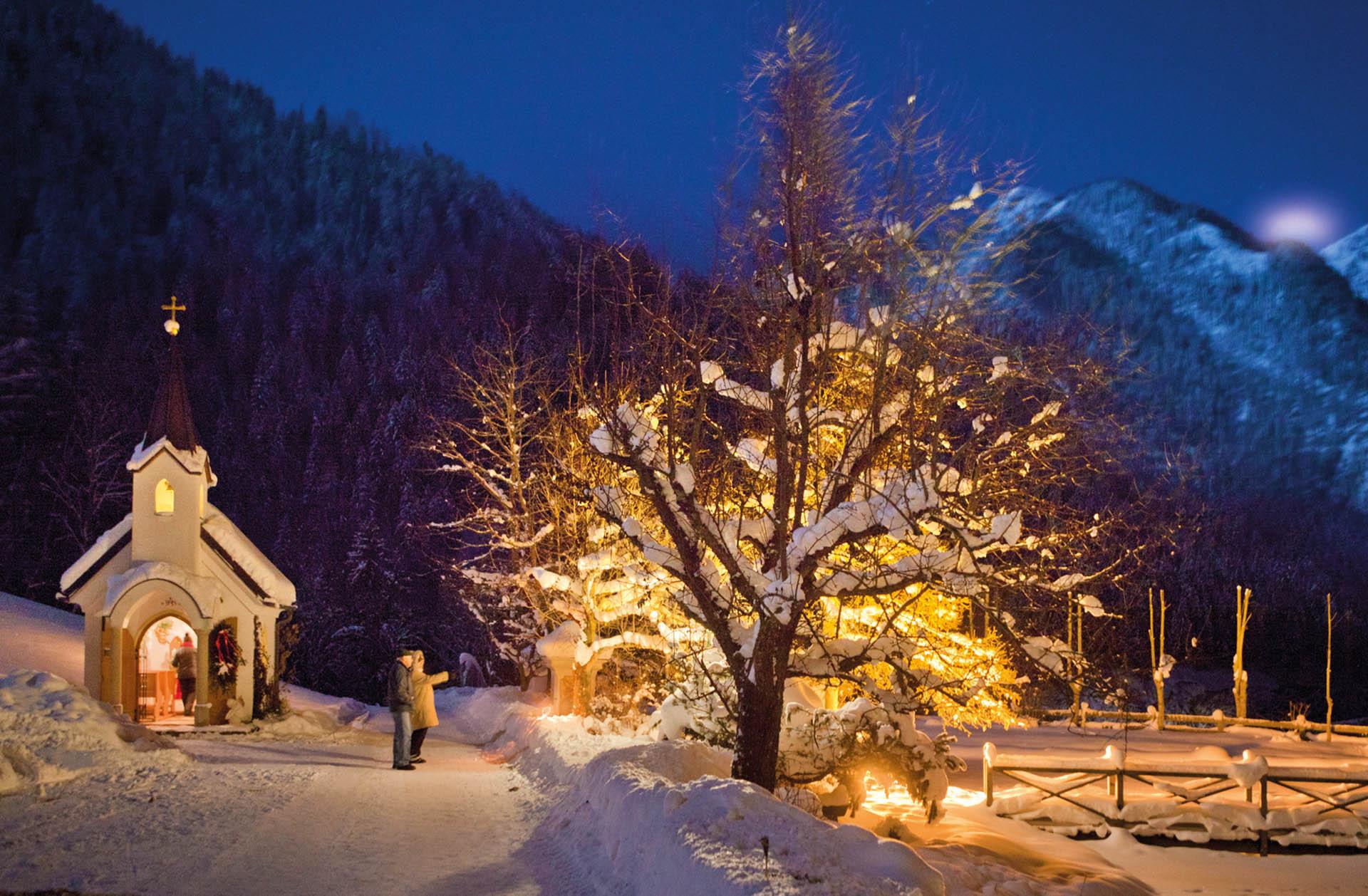 Led Baum Mit Schnee Deko Led Baum Schnee Tedi Shop