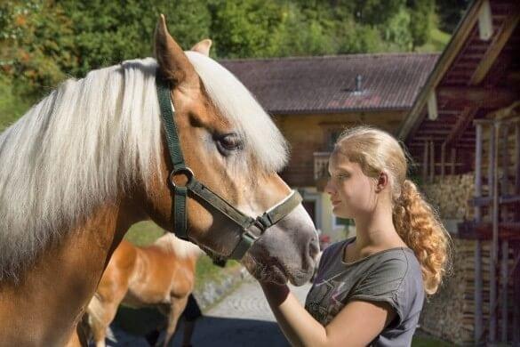 Pferd mit blondem Mädchen