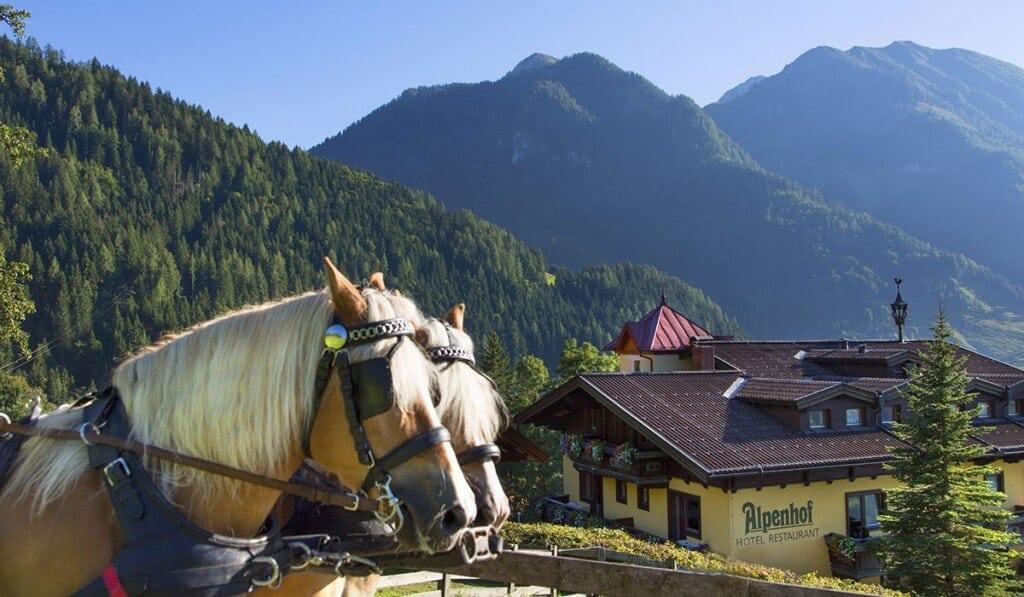 Pferdekutsche vor Hotel