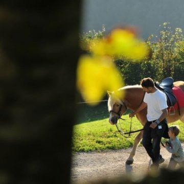 Farm mit Pferd