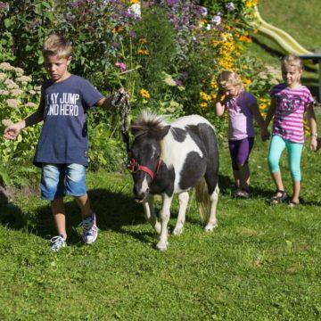 Kinder mit Pony auf Wiese