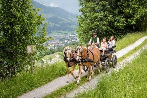 Kutschfahrt mit Pferden