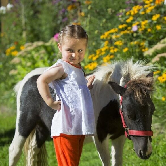 Mädchen streichelt Pony