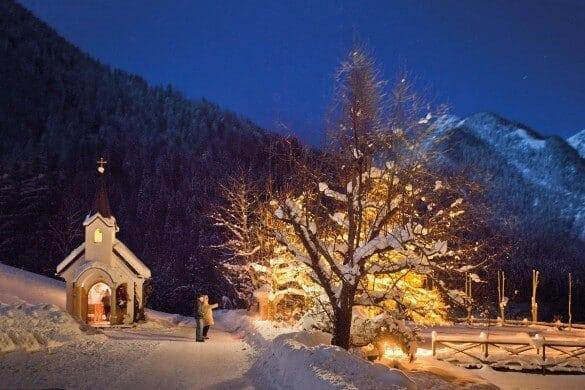 Baum mit Lichterkette im Winter